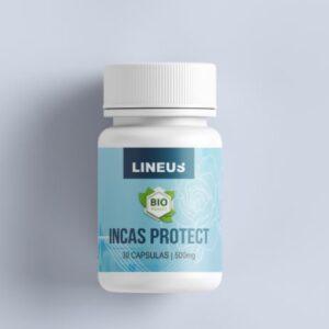 Incas Protect